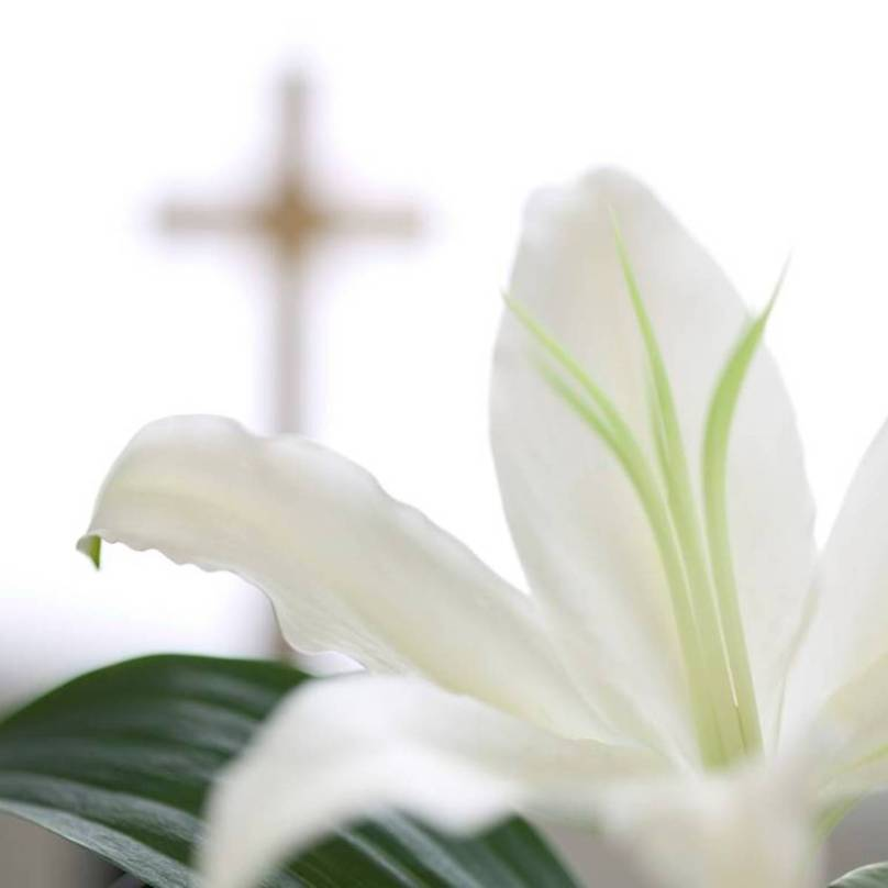 easter-lily with cross